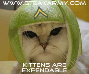 kittensareexpendable